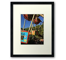 Fliks Flyers Framed Print