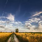 Hungarian skies pt LVII. by realityDream
