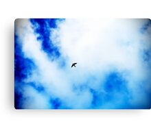 The Swallow. Canvas Print