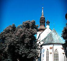 Toomkirik. by tutulele