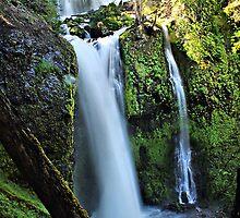 Falls Creek Falls Washington State  by Don Siebel