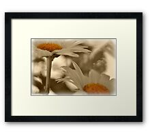 If I had my live to live over... Framed Print