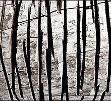 WOOD LINES by EstherLPolonio
