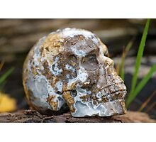 Agate Carved Crystal Skull  Photographic Print