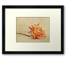 bellezza Framed Print