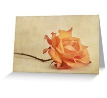 bellezza Greeting Card
