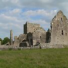 Hore Abbey,Cashel,County Tipperary,Ireland. by Pat Duggan