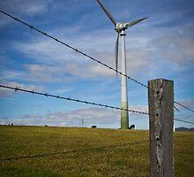 Windmill Farm by photographybydr