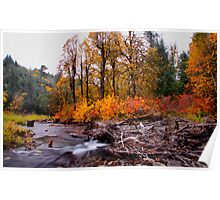 Canyon Creek Fall Poster