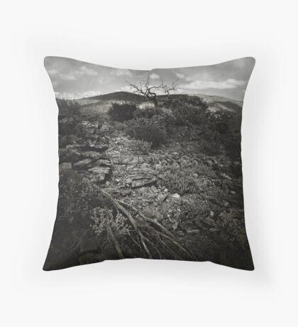 arkaroola late Throw Pillow