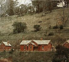 Carcoar Railway Station by garts