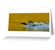 Loon Lift Off Greeting Card