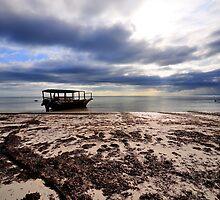 Zanzibar - Low Tide by Viktoria Osipenko
