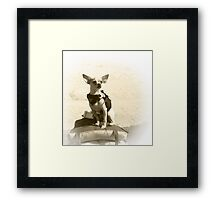 Chihuahua and the Kayak Adventure Framed Print