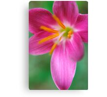 Flower Closeup Canvas Print