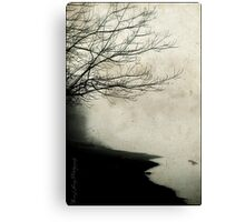 Into the Mystic Canvas Print