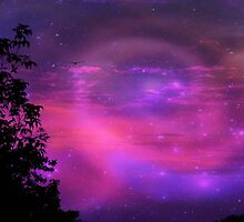 Aurora Borealis © by Dawn M. Becker