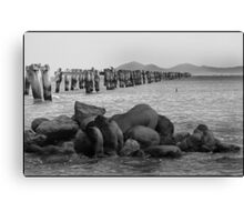 Old Jetty-Clifton Springs Canvas Print