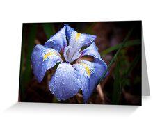 Velvet Blue Greeting Card