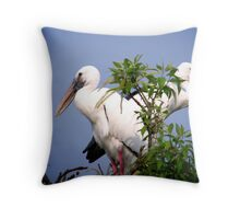 Two Openbill birds Throw Pillow