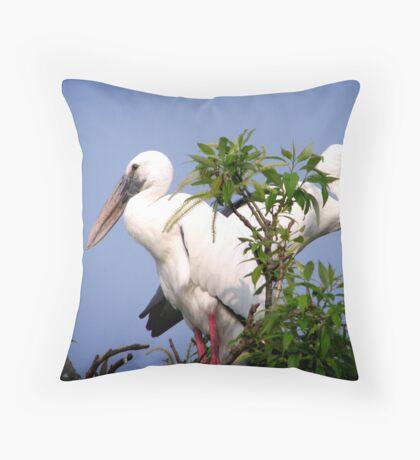 Two Openbill birds Throw Pillow