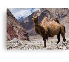 Gateway to the Karakoram Highway Canvas Print