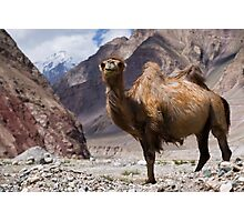 Gateway to the Karakoram Highway Photographic Print