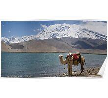 Phone coverage at Lake Kara Kul Poster