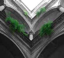 Italian Courtyard 2 by redph