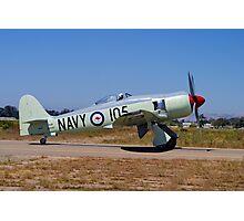 Hawker Sea Fury FB MK II Photographic Print