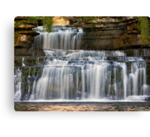 Cotter Force Canvas Print