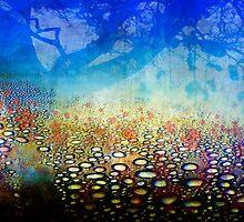 poppy wood by DARREL NEAVES