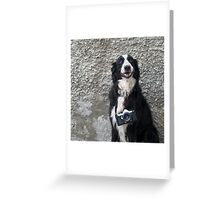 Proud Owner Greeting Card