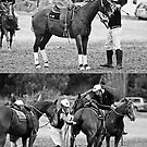 Jugiong Polocrosse # 3 by GailD