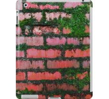 Grunge - Mossy brick wall iPad Case/Skin