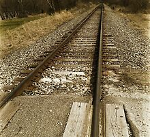 Along the Tracks by Michelle Pritchett Photography