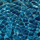 Penguin Pool I by John Gaffen