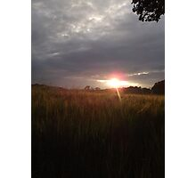 Sunset over green field Photographic Print
