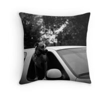 Plaza Dog Throw Pillow