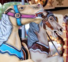 spirited carousel by jdadkin