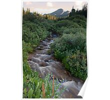 Selkirk Creek Poster