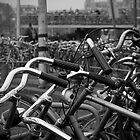 Amstercycles by Ryan Welty