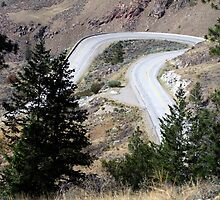 Road with a Twist by George Cousins
