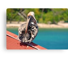 Bet you can't do this... Canvas Print