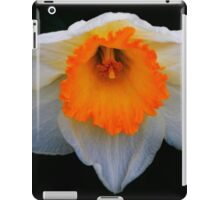 Daffodil in Bloom iPad Case/Skin