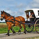 Together in a carriage by Adri  Padmos