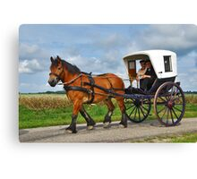 Together in a carriage Canvas Print