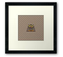 Sitting Grey Owl  Framed Print