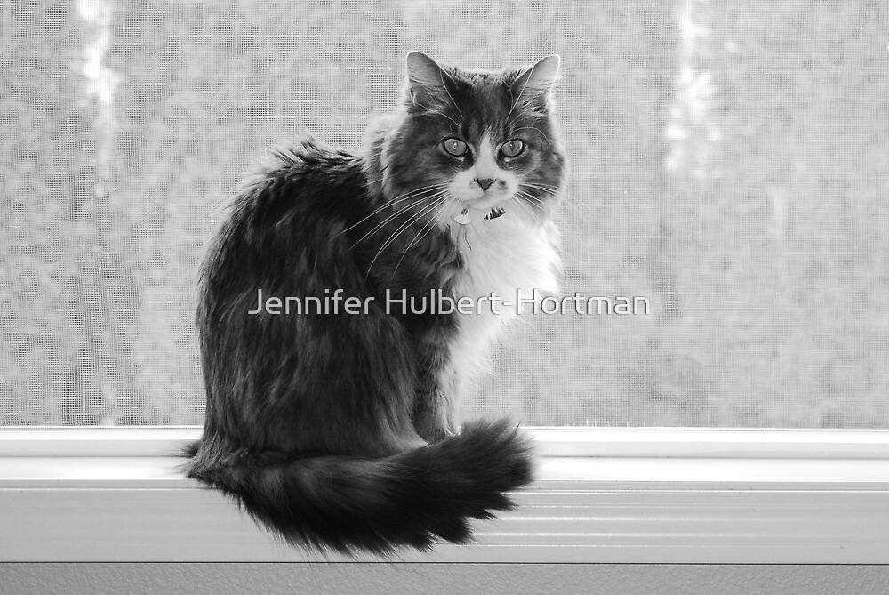 Lucy by Jennifer Hulbert-Hortman