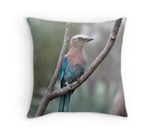 Lilac-breasted roller. Throw Pillow